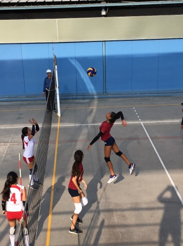 colegio-trener-volley-girls-2
